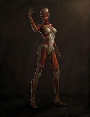 tomb-raider-anniversary-concept-art-44_29473797646_o
