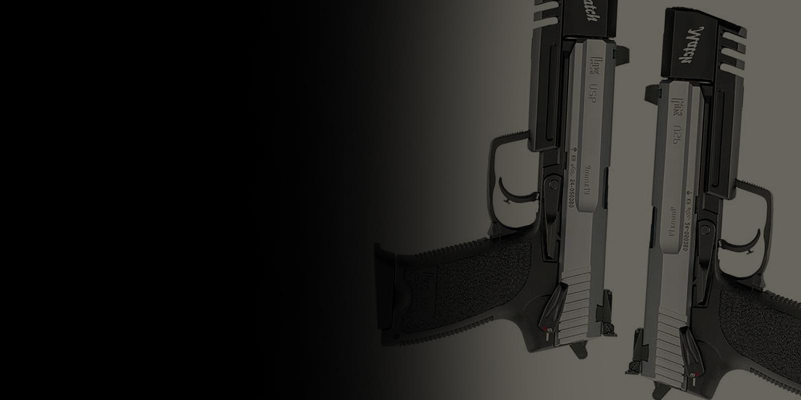 Les deux pistolets
